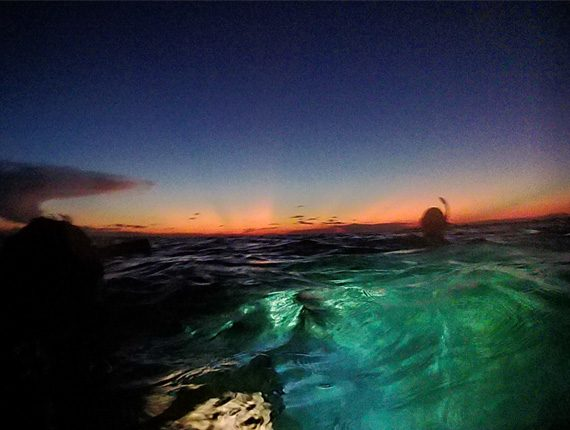 Night Snorkel - Snorkel Tours - Snorkeling Belize - Anda De Wata - Sunset and Moon Rise view