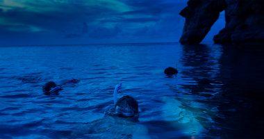 Night Snorkel - Snorkel Tours - Snorkeling Belize - Anda De Wata